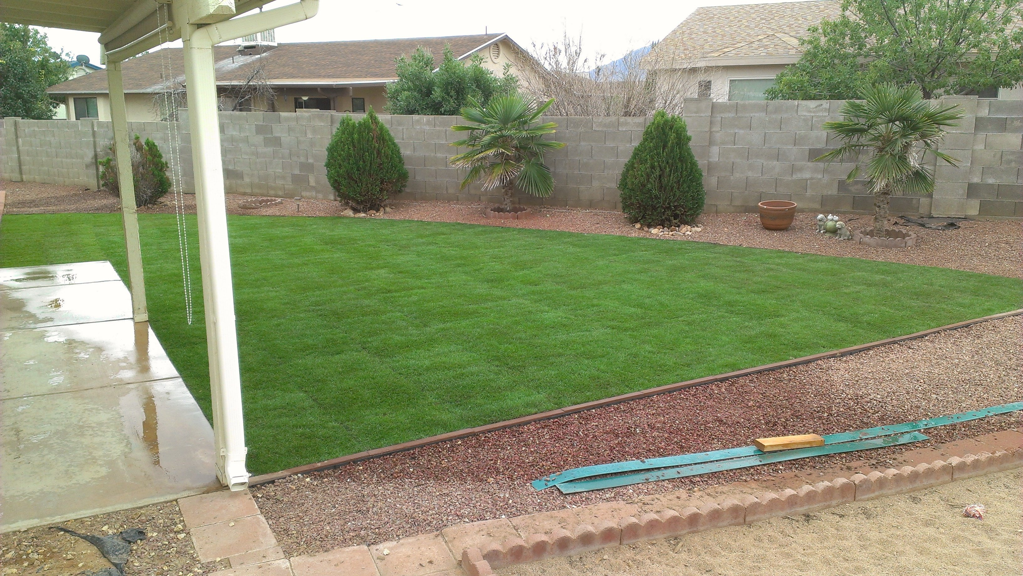 Caring for sod